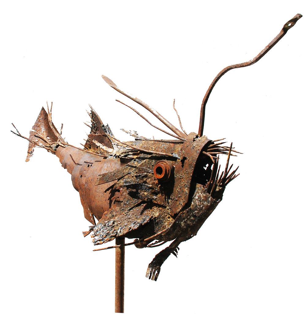Poisson-lanterne de face